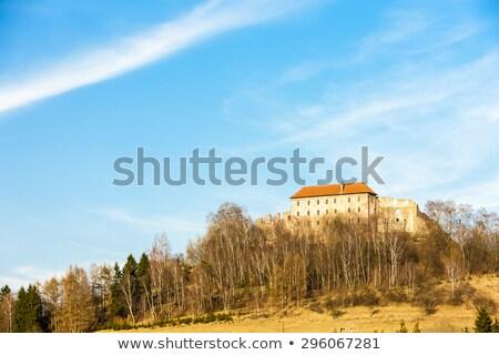 城 チェコ共和国 アーキテクチャ 屋外 外 ランドマーク ストックフォト © phbcz