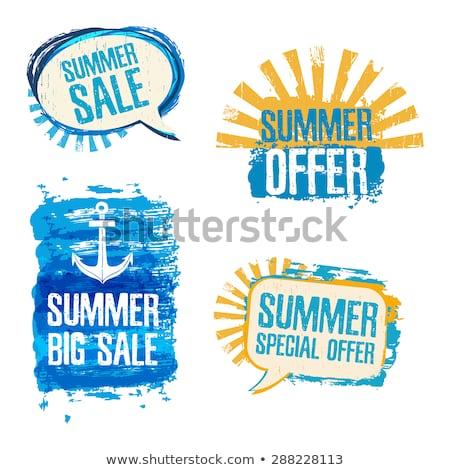 Verão azul o ícone do vetor projeto digital gráfico Foto stock © rizwanali3d