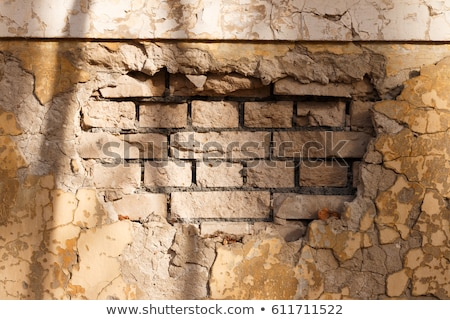 facade wall cross section of brick blocks Stock photo © lunamarina