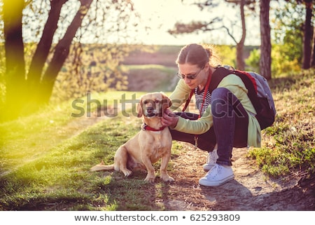 kutya · női · kutyák · kabát · állatorvosi · laboratórium - stock fotó © EvgenyBashta