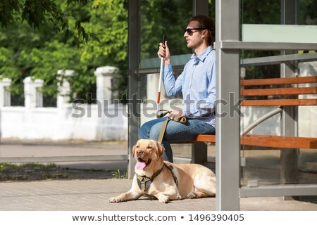 blind young man with dog-guide Stock photo © Paha_L