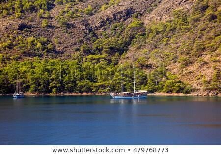 Турция дома дерево природы пейзаж морем Сток-фото © AntonRomanov