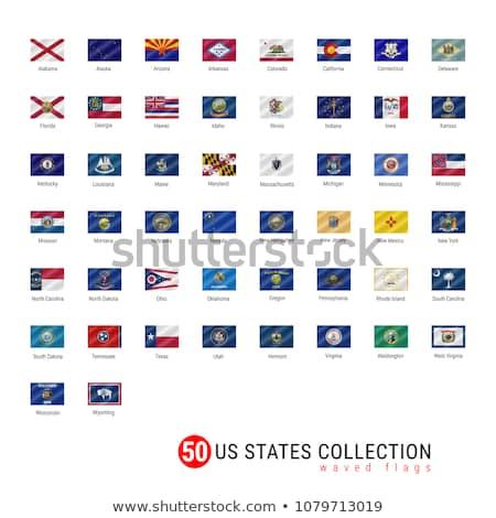 zászló · Nevada · csillagok · kék · piros · szél - stock fotó © creisinger