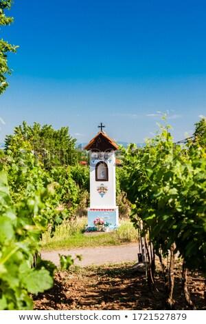 gods torture with vineyard near nechory czech republic stock photo © phbcz