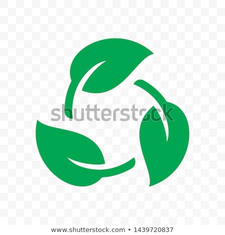 Vektor ökológiai szimbólum körvonalak térkép nem Stock fotó © ayaxmr