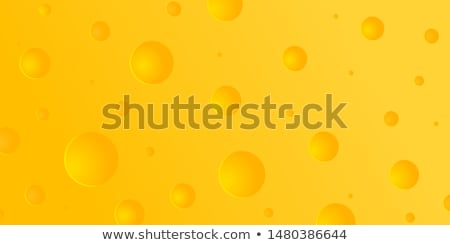 Vector cheese backgrounds stock photo © Samoilik