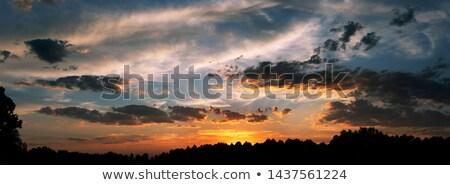 Sunset over the ground Stock photo © dmitroza