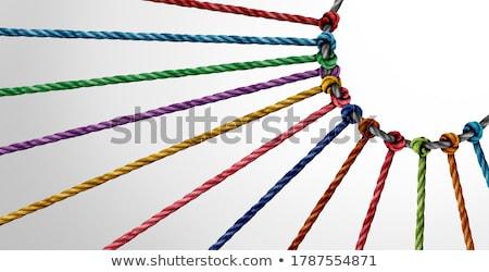 Diversiteit cirkel groep touwen Stockfoto © Lightsource