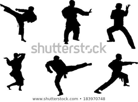 Man practicing taekwondo with boxing stand Stock photo © bluering