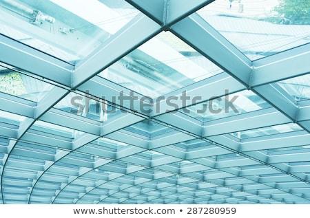 Curvy glass building Stock photo © ldambies