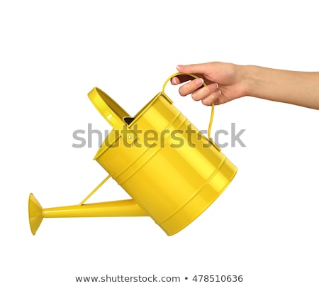 hand holding watering can isolated on white stock photo © elnur