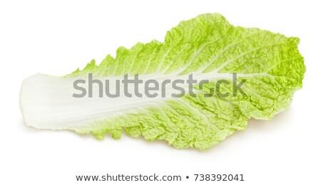Kínai káposzta levelek friss étel saláta Stock fotó © Digifoodstock