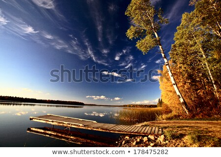 boat dock and autumn trees along a saskatchewan lake stock photo © pictureguy