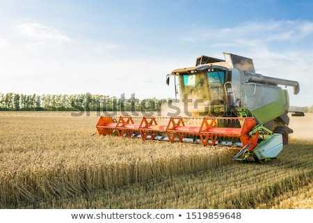 combine harvester machine harvesting ripe wheat crops stock photo © stevanovicigor