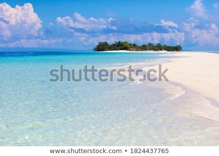 Trópusi sziget nyár reggel óceán tengerpart Stock fotó © ixstudio