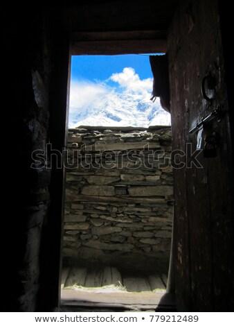 Tibetan door Stock photo © bbbar