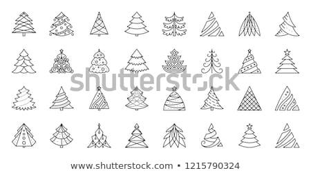 Vektor Sammlung Weihnachten Fichte Bäume Niederlassungen Stock foto © Sonya_illustrations