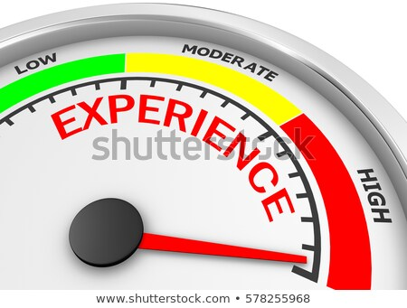 Experience - Text on Conceptual Gauge with Red Needle. 3D. Stock photo © tashatuvango
