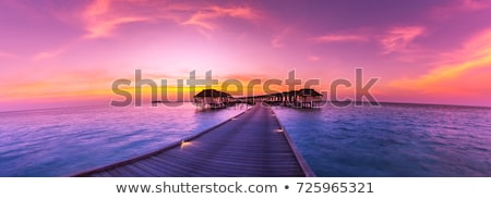 bungalow under palm tree on tropical island stock photo © orensila