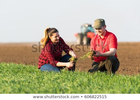 Adam çiftçi traktör alan örnek hasır şapka Stok fotoğraf © lenm