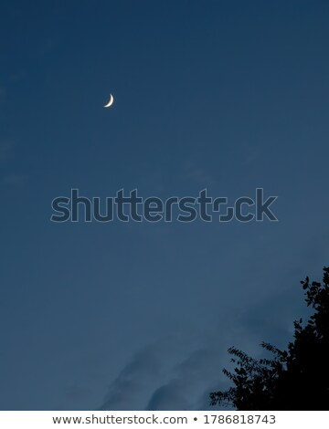 Waxing Moon Portrait with Copy Space stock photo © suerob