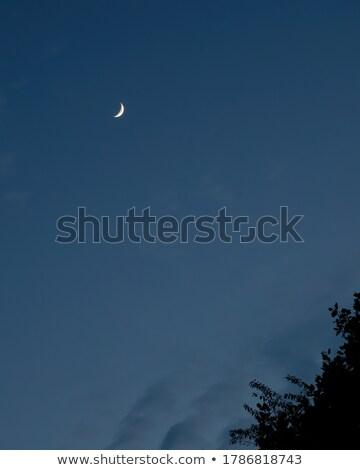 Waxing Moon Portrait with Copy Space Stock photo © suerob