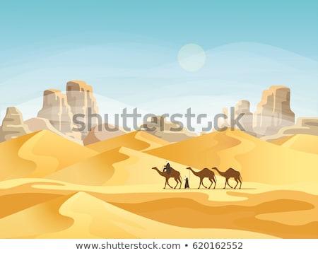 Deserto cena pessoas camelos ilustração edifício Foto stock © bluering