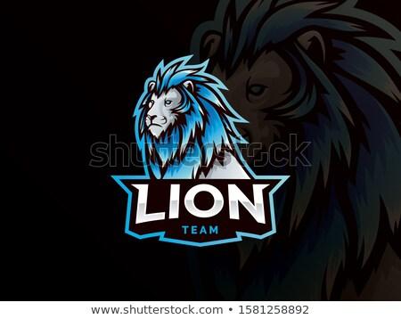 lion gamer mascot stock photo © krisdog