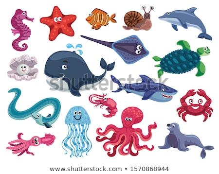 Vadállatok keresztrejtvény illusztráció kereszt művészet oktatás Stock fotó © bluering