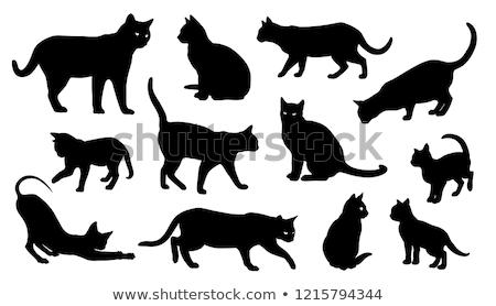 Chat silhouette simple heureux vecteur forte Photo stock © jeff_hobrath