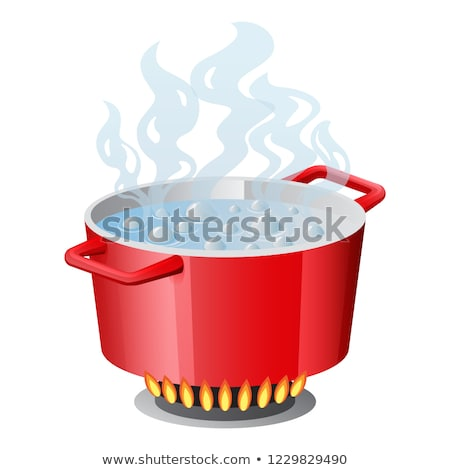 Red pan, saucepan, pot, casserole, cooker, stewpan with boiling water and opened pan lid vector isol Stock photo © MarySan