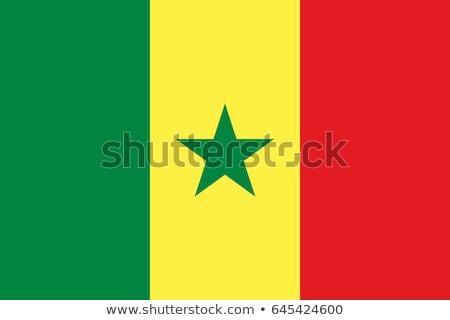 Szenegál zászló fehér terv keret felirat Stock fotó © butenkow