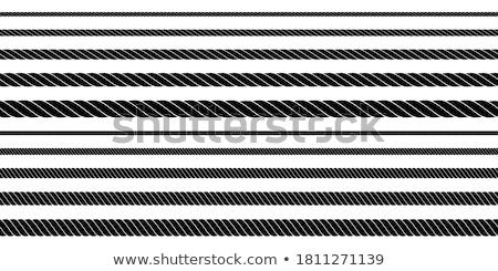 Twisting Rope Set Stock photo © cteconsulting