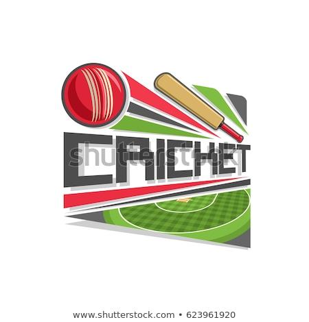 Kriket top yörünge ikon renk şablon Stok fotoğraf © angelp