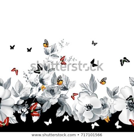 Sin costura floral frontera colorido mariposas blanco Foto stock © Natalia_1947