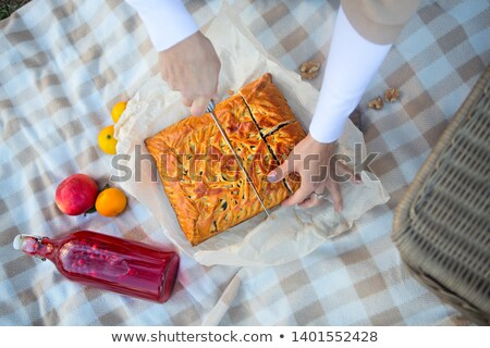 hands of woman with pieces of apple pie on a checkered blanket stock photo © dashapetrenko