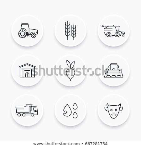 ストックフォト: 農業の · 車 · ベクトル · 薄い · 行