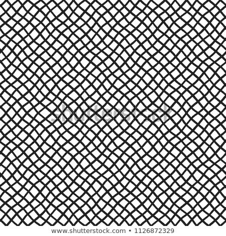 Background made from fishing nets Stock photo © BarbaraNeveu