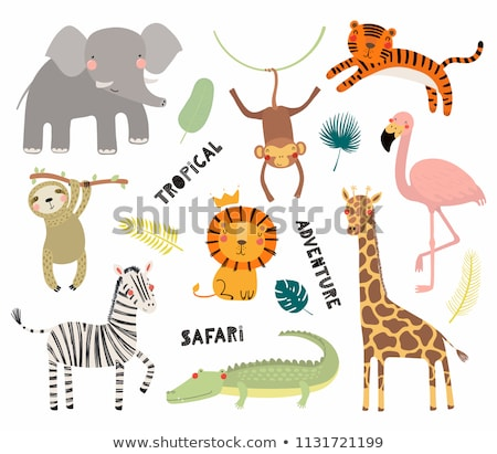 Cute exotic animals - set of flat design style characters Stock photo © Decorwithme