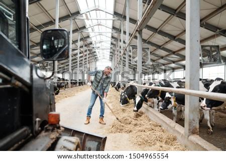 молодые работник современный животного фермы сено Сток-фото © pressmaster