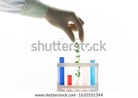 Kéz biológus flaska növény doboz csövek Stock fotó © pressmaster