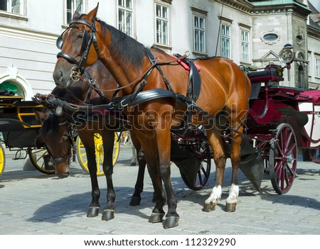 Stock photo: Horse-drawn Carriage in Vienna at the famous Stephansdom Cathedr