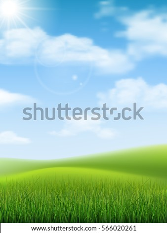 colorful summer bright fields landscape green grass clear blue sky stock photo © marysan