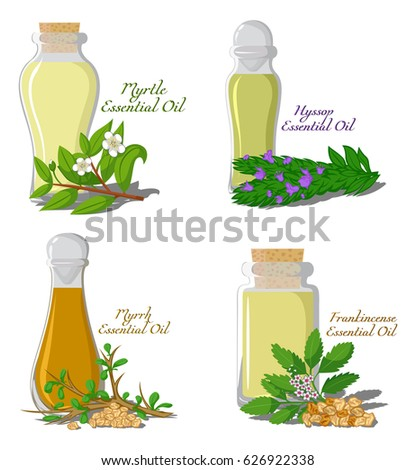 Bottles of essential oil with frankincense, hyssop, myrrh, rosemary Stock photo © madeleine_steinbach