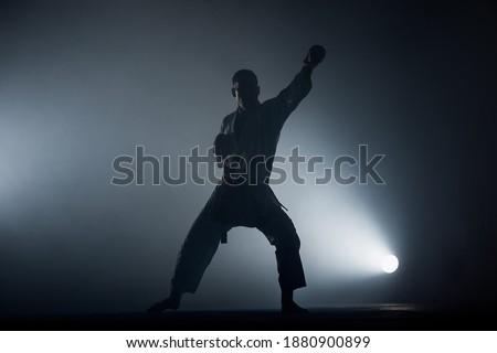 Fekete atléta hivatalos karate férfi sport Stock fotó © Andreyfire