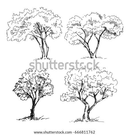 set of graphic black white landscape sketch by line art illustra stock photo © margolana