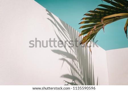 Mode schoonheid foto minimalisme Stockfoto © serdechny