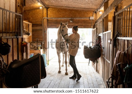 Young active woman in casualwear putting bridles on white racehorse Stock photo © pressmaster