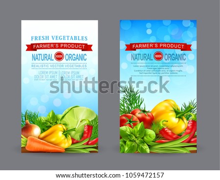 Legumes folheto vetor realista berinjela tomates Foto stock © frimufilms
