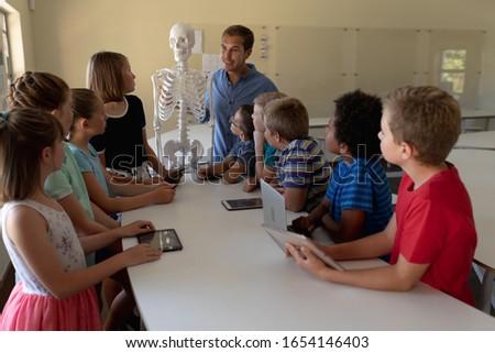 Leraar uitleggen menselijke skelet Stockfoto © wavebreak_media